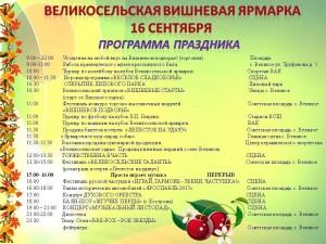 image_programma